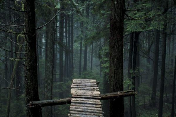 Ladder bridge on Mount Seymour, BC