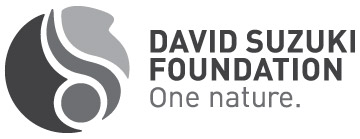 vimff 2018 partner david suzuki foundation
