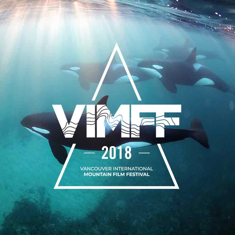 vimff trailer released 2018 blog image