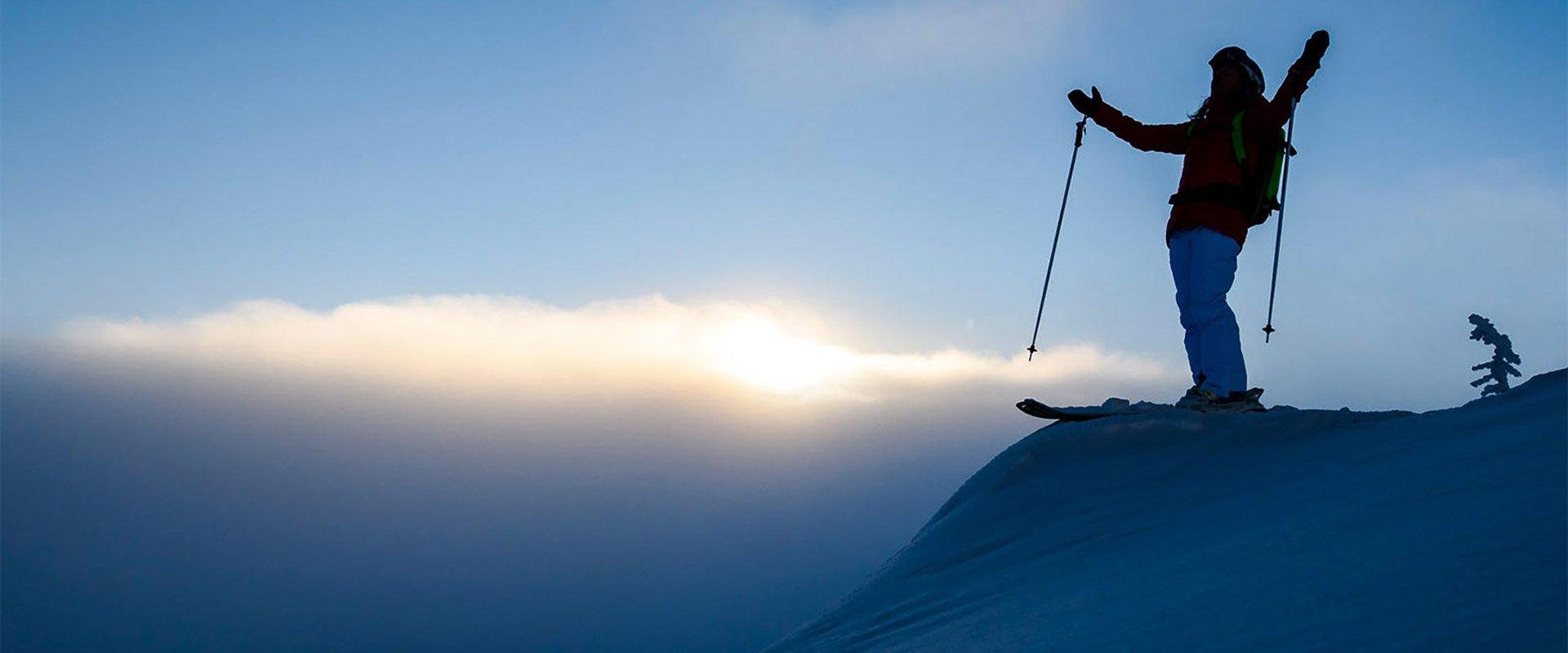 vimff 2019 protect our winters ski show title bg