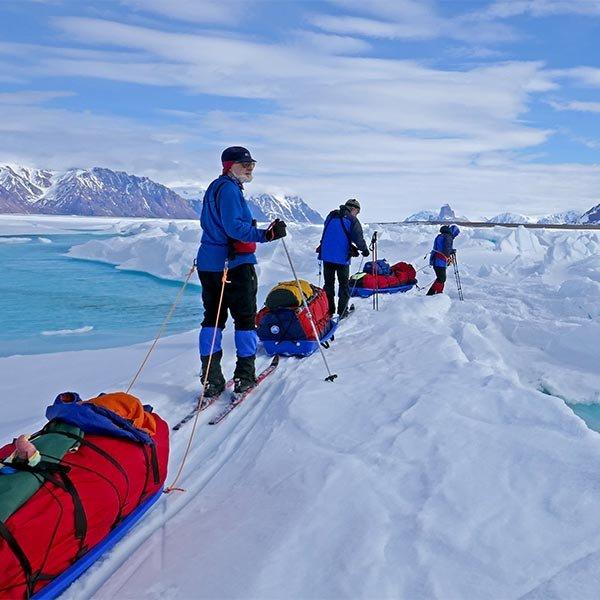 vimff polar journeys featured