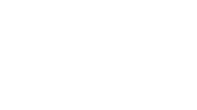 vimff award winning films laurels