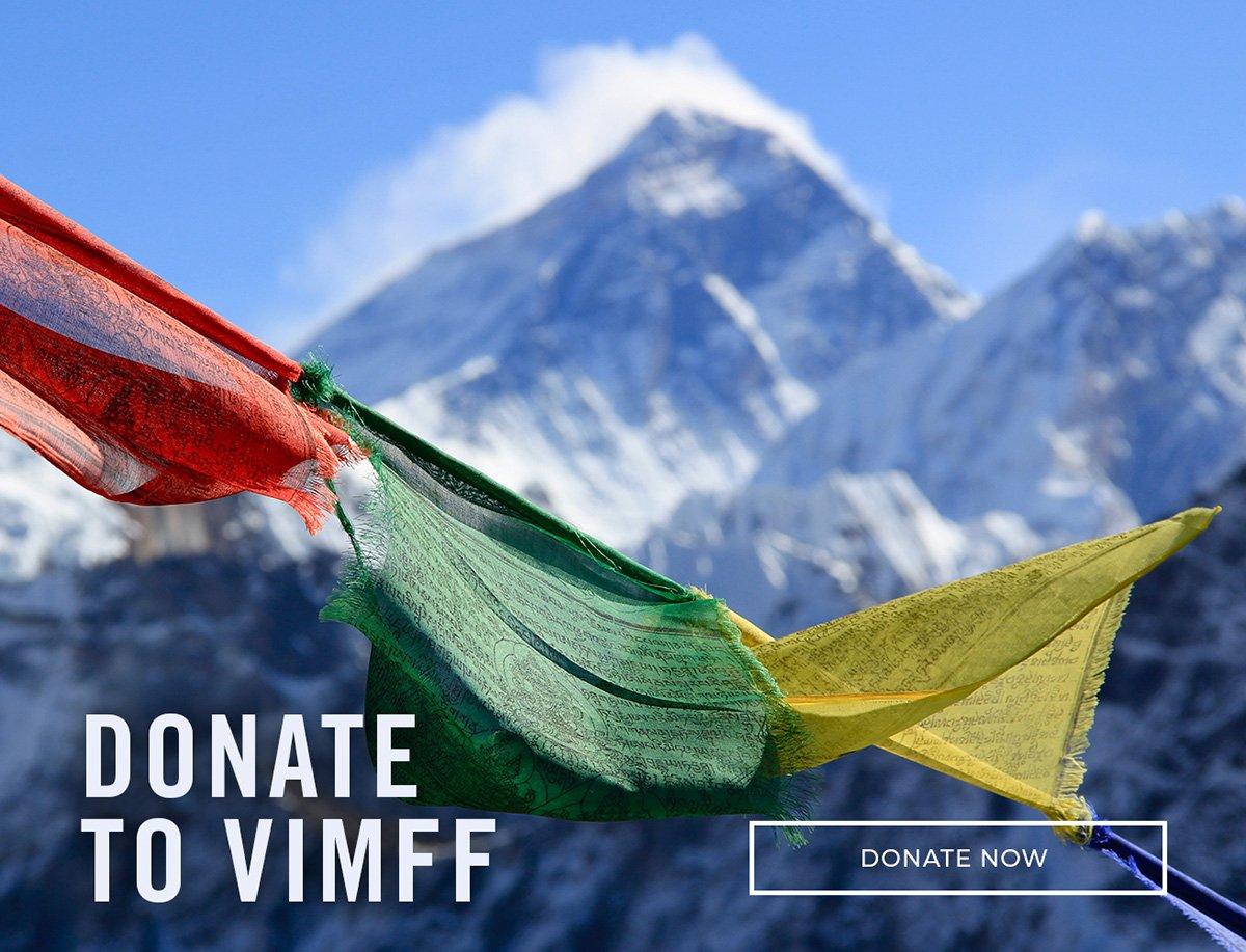 vimff donate to vimff cta