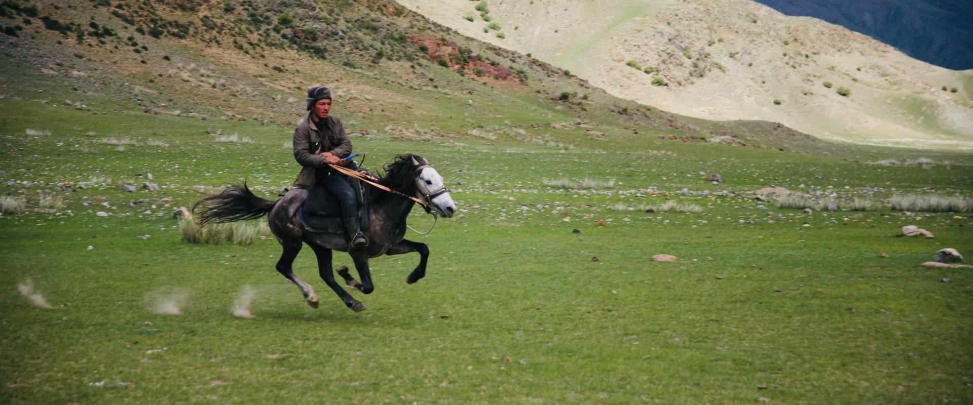 vimff fall series mountain culture show my horse my destiny title bg