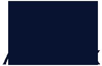 VIMFF arcteryx logo navy