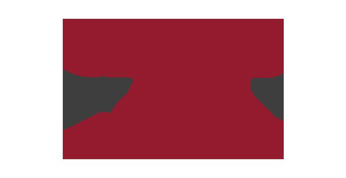 vimff partner climbon logo