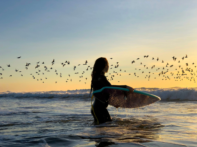 Paola Cernicchiaro__Wave Bandit