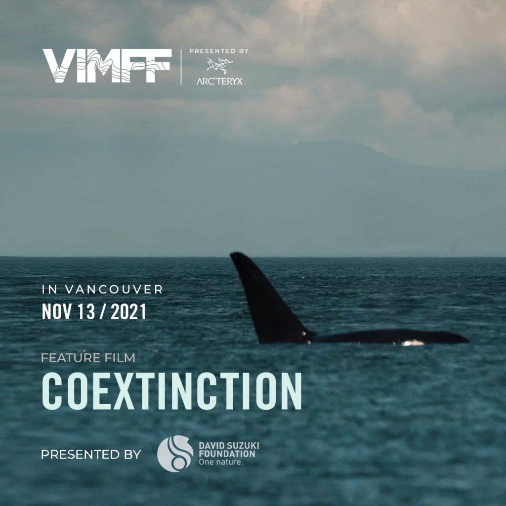 VIMFF Fall Series coextinction product x